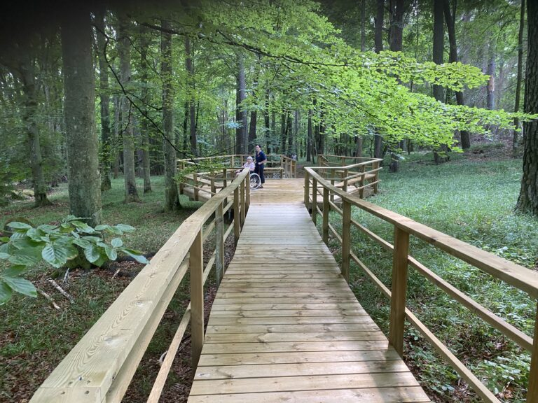 Skogsvägen vid Edsby slott